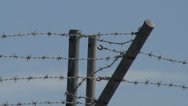 Stock Video Footage of Barbed Wire 02