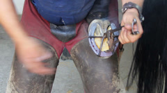 Shoeing a horse Stock Footage