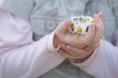 Germany, Girl holding daisies, close up Stock Photos