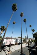 Residential area of los angeles Stock Photos