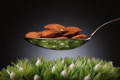 spoon full of almonds - stock photo