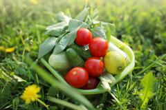 Organic food outdoors Stock Photos