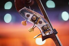 double bass detail - stock photo