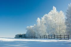 winter landscape and trees - stock photo