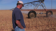 Stock Video Footage of Farmer watches center pivot