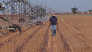 Stock Video Footage of Farmer walks beside center pivot