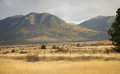 Farm yellow aspens in the hills fall colors and yellow grass missoula montana Stock Photos