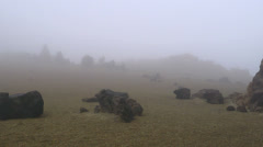 Foggy mountain landscape. - stock footage