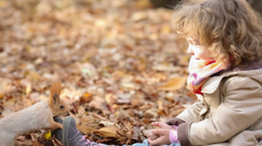 Stock Video Footage of child feeds a little squirrel
