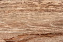 Brown wood texture. abstract background Stock Photos