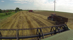 Wheat Harvest - Combine Harvester in Action Stock Footage