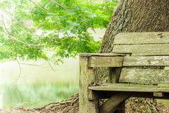 Old  wooden bench in park. Stock Photos