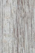 pattern of light brown wood surface texture, vertical - stock photo