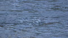 Flowimg River Stock Footage