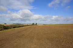 farming in the yorkshire wolds - stock photo