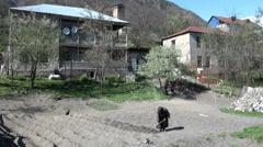 Lady working in dry field, village in Georgia, Caucasus Stock Footage