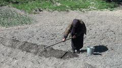 Working dry field in Georgia, Caucasus Stock Footage