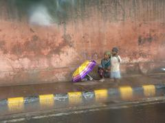Stock Photo of India-Hiding from the rain