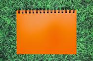 Stock Photo of blank orange ring binding on green grass