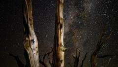 Stock Video Footage of Perseid Meteor Shower Bristlecone Pine 04 Dolly R Down Milkyway Time Lapse