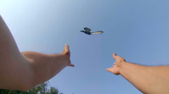 SLOW MOTION: Male hands released dove into blue sky Stock Footage