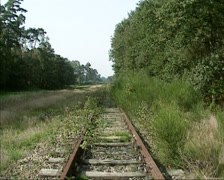 Overgrown railway embankment + pan shallow puddle or fen Stock Footage