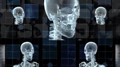 Skulls Spin HD - stock footage