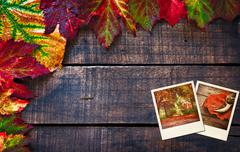 Colorful wet autumn leaves arranged on old wooden table Stock Photos