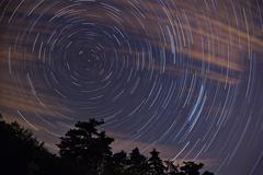 night sky with star trails - stock photo