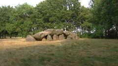 Hunebed or megalith tomb ROLDE, THE NETHERLANDS + zoom in boulder Stock Footage
