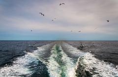 Herätä veneen Atlantin valtameren ja lokkeja. Kuvituskuvat