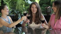 Group of young and beautiful women drink wine in outdoors restaurant HD Stock Footage