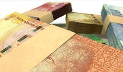 South african rand notes bundles stack extreme close Stock Illustration