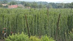 Hop-garden spraying Stock Footage