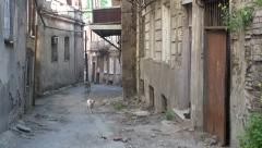 Dogs walk through 'Old Town' Tbilisi Stock Footage
