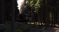 narrow gauge steam locomotive - stock footage