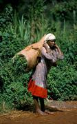 Woman loading big bag Kenia 02 Stock Photos