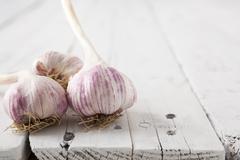 garlic bulbs - stock photo