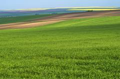 landscape agricultural - stock photo