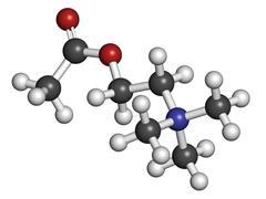 Acetylcholine (ach) neurotransmitter, molecular model. Stock Illustration