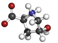 Hydroxyproline (hyp) collagen building block, molecular model Stock Illustration