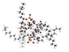 lipid a bacterial endotoxin, molecular model - stock illustration