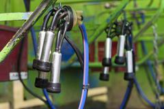 mechanical milker - stock photo