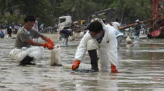 OIL SPILL DISASTER WORKERS CLEAN TROPICAL BEACH - stock footage