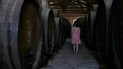 Female tourist in a wine cellar Stock Footage