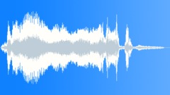 Jungle bird screech Sound Effect