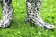 Wellies in rain, slow motion shot at 240fps Stock Footage