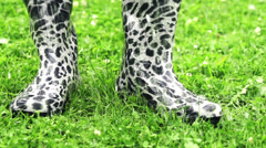 Wellies in rain, slow motion shot at 60fps Stock Footage