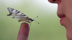 Girl with a butterfly on her finger (close-up) Stock Footage