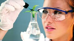 Scientific research - stock footage